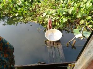 la salle de bain, au milieu des lotus...idem pour les besoins hygièniques