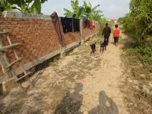 Vous voyez la clôture ? d'ici un an, le propriétaire va tout boucher et nos familles seront sans abri , car sans aucun passage !