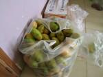 40 kgs de mangues